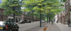2009-06-11 Singelring 3D groter x_250x112